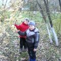 «Наблюдения в осенней роще». Занятие-прогулка с детьми среднего дошкольного возраста