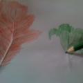 «Осенние листья» (рисование в технике Фроттаж)