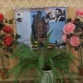 Спортивный праздник, посвященный памяти героя войны Масалова Н. И.
