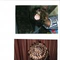 Русая коса— девичья краса!