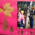 Золотая осень (рамки для фотографий из листьев)