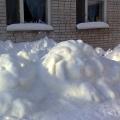 Ледниковый период в детском саду