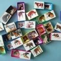 Дидактическая игра «Животные и их детёныши»