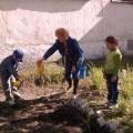 «Украсим наш детский сад». Реализация мероприятий по экологическому образованию через организацию проектной деятельности