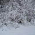 «Зимняя сказка». Музыкальный видеопроект по теме «Зима» для детей дошкольного возраста.