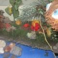 Выставка-конкурс поделок из природного материала детей и родителей «Чудеса своими руками»