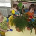 Конспект интегрированного занятия в младшей группе «Комнатные растения»