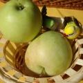 Праздник «Яблочный Спас»