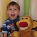 Дидактические куклысобачка Шарик и обезьянка Анфиска