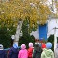 «Листья желтые летят». Конспект занятия по рисованию во второй младшей группе