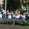Наблюдения весной на прогулке в средней группе