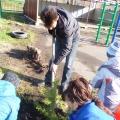 Посади с ребенком дерево