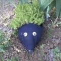 Капелька лета в зимнюю стужу. Так был украшен один из уголков на нашей площадке.