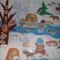 «Кто где зимует?» Дидактический плакат для детей 4–5 лет