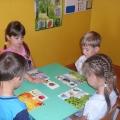 Подборка дидактических игр для детей старшей группы детского сада