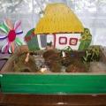 Проект «Изучаем мхи и лишайники» для детей подготовительной группы.