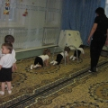 Конспект непосредственно образовательной деятельности по физкультуре в старшей ясельной группе. «В гости к Мишке косолапому»
