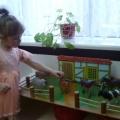 Система экологического воспитания малышей и презентация.