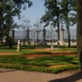 Летний сад. Фотоотчёт