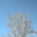 Фотоотчёт «Краски неба»