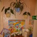 Уголок природы в детском саду
