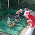 Познавательно-исследовательский проект «Во саду ли, в огороде»