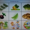 Учебно-методическое пособие «Стихи в картинках»