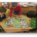 Презентация-игра «Безопасное поведение на дороге» для старшего возраста и подготовительной группы детского сада