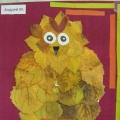 Совушка-сова. Аппликация из осенних листьев