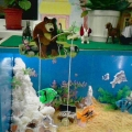 МК сухой аквариум
