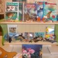 Мини-музей «Обитатели океана»