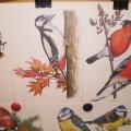 «Зимующие птицы— наши друзья»