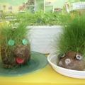 Наш сказочный огород