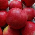 «Главный плод нашей жизни». Фотозарисовка