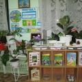 Экологическое воспитание в нашем детском саду №54, (часть 3)., природный уголок в старшей группе.