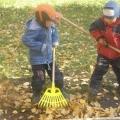 Осень в нашем детском саду.