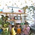 «Развитие у детей навыков и умений опытно-экспериментальной деятельности». (Из опыта работы).