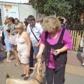 Приглашаю на прогулку в Ленинградский зоопарк