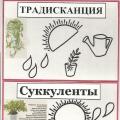 Паспорт растений
