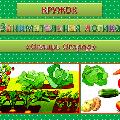 Комплексно-тематическое планирование по теме «Овощи. Огород»