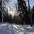 Стихотворение «Веселый снег»