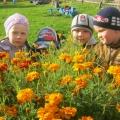 Экскурсия к цветникам. Фотоотчёт