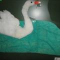 Аппликация «Царевна Лебедь» по произведению А. С. Пушкина