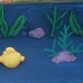 А вот и наш аквариум!