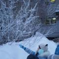 «Наблюдение за снегопадом». Конспект занятия-прогулки с детьми старшего дошкольногов возраста