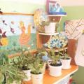 Конспект ООД по экологии в средней группе «Мир комнатных растений»