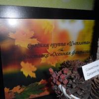 Фотоотчет. Выставка «Осенние фантазии» в средней группе