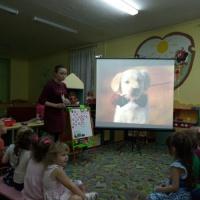 Проект «Мини— музей «Мой друг собака»