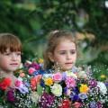 Сказка «Страна чудесных цветов»
