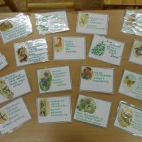 Дидактическая игра «Назови примету» по познавательному развитию, направление «Экологическое воспитание» для старшего возраста